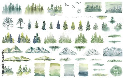 Watercolor Forest tree illustration Fototapeta
