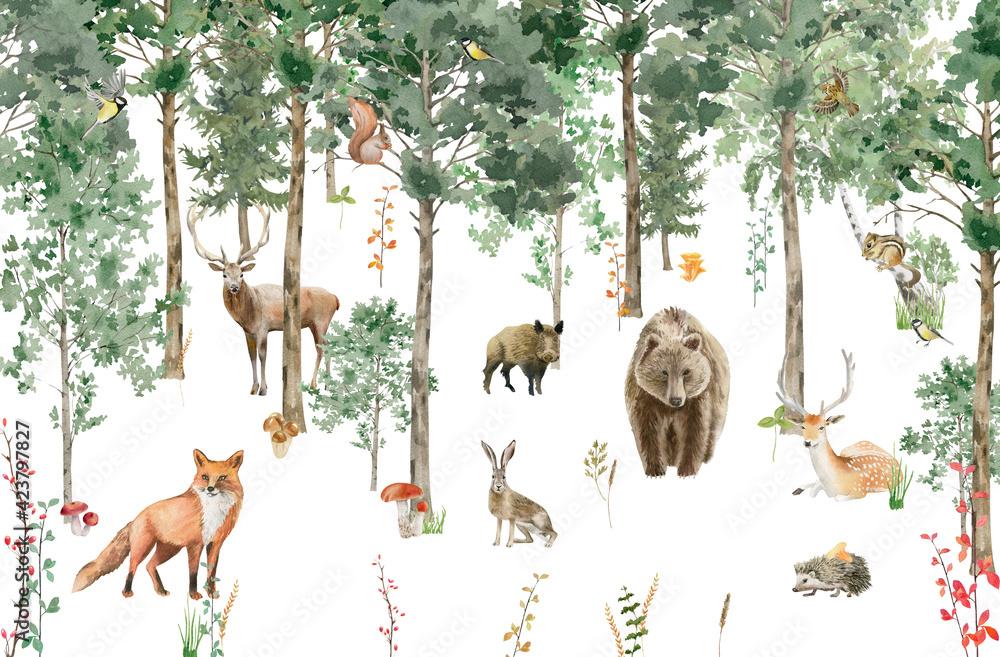 Fototapeta las dla dzieci