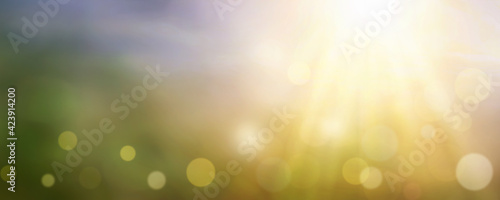 Blurred nature abstract bokeh background #423914200