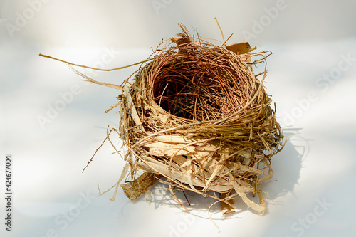 Fotografia The bird's nest is laid bare and old abandoned on a white background, and there is a text area