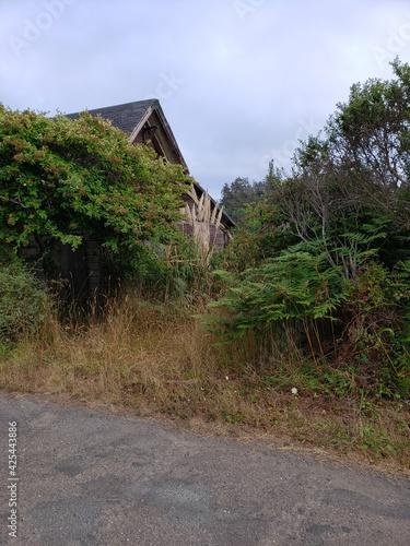 Caspar, California inland coastal area the headlands Fototapeta