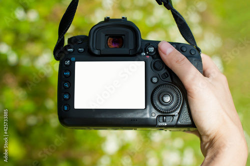 hand holds the camera. female hands with a camera, holds to photograph a wild flower, green background. close-up, concept of tourism, travel, hobby, blogger. black camera, white screen, space for text