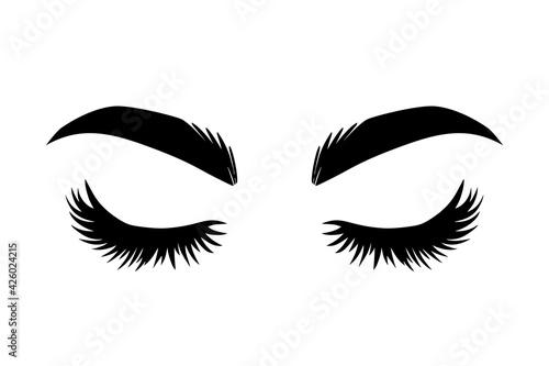 Fotografija Brows and lashes vector illustration