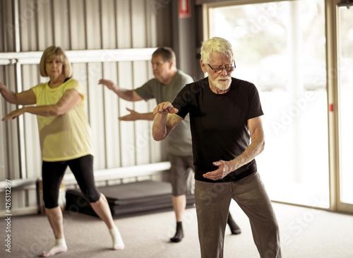 Carta da parati Group of elderly senior people practicing Tai chi class in age care gym facilities