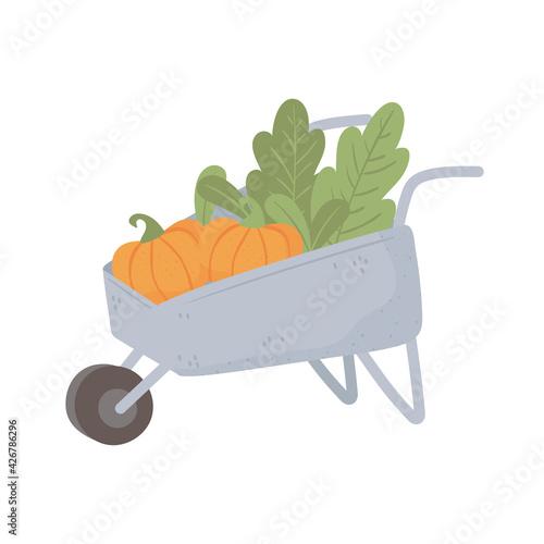 Photo agriculture pumpkins wheelbarrow