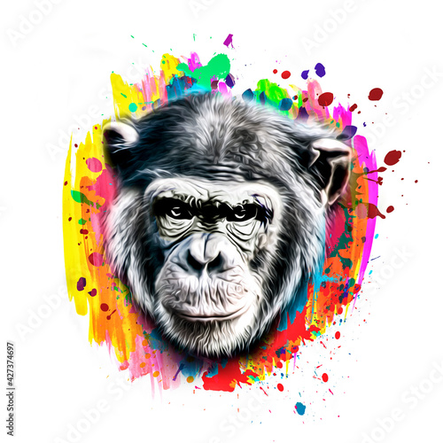 Fotomural portrait of a Chimpanzee color art