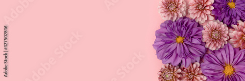 Pink and purple dahlia flowers texture with copyspace Fototapet