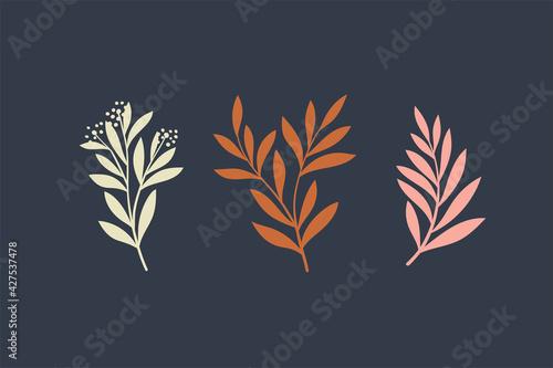 Fotografia, Obraz Set of botanical vector elements