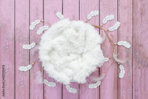 Fotomural Newborn backdrop with pink planks and feathers