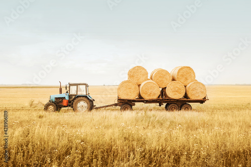 Canvas-taulu The tractor removes bales of hay from the field after harvest