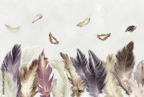 Fotografia Colored feathers