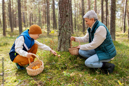 Fotografia picking season, leisure and people concept - happy smiling grandmother and grand
