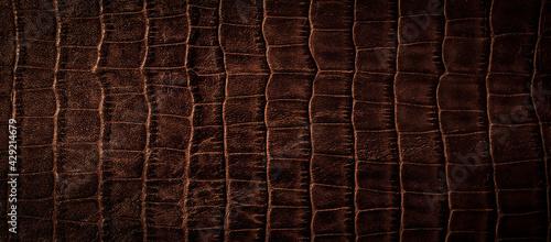 Fotografia 茶色いワニの革の背景テクスチャー