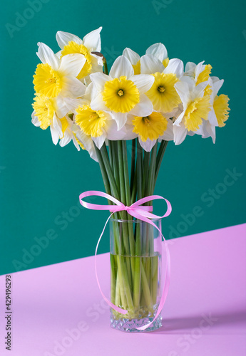 Obraz na plátně Bouquet of bright yellow daffodils on a creative green-pink background