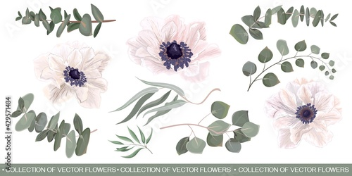 Obraz na plátně Vector Floral Set