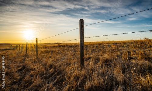 Obraz na plátne Sunrise behind a wooden barbed wire fence over natural prairie grasslands in Alberta Canada
