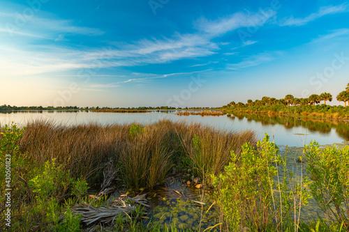 Photo St. Marks Wildlife Refuge