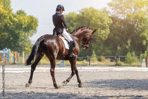 Slika na platnu Young girl riding horse at dressage advanced test