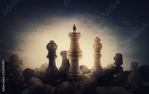 Cuadros en Lienzo Chess player achieving success
