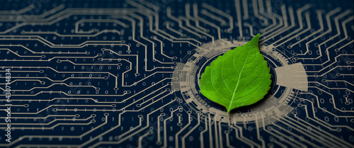Photo Green leaf on the converging point of computer circuit board