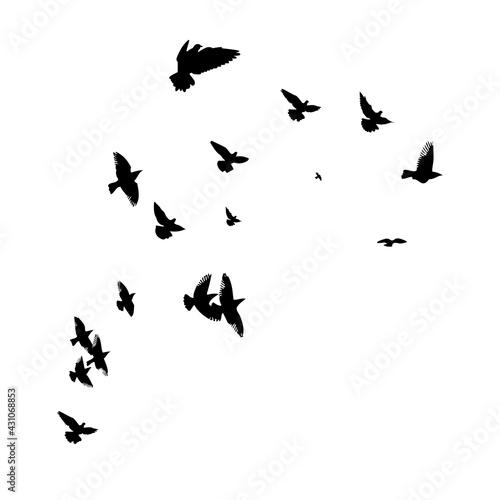 Canvas Print A flock of flying birds. Vector illustration