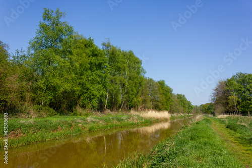 Fototapeta Olens Broek nature reserve on a sunny day during springtime with the 'Kleine Net