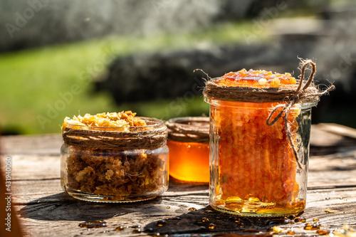 Slika na platnu Macro photo of a bee hive on a honeycomb