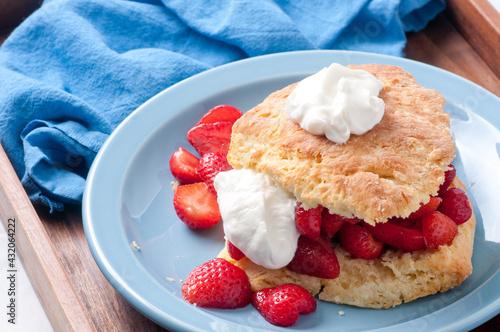 Fényképezés strawberry shortcake stock photo