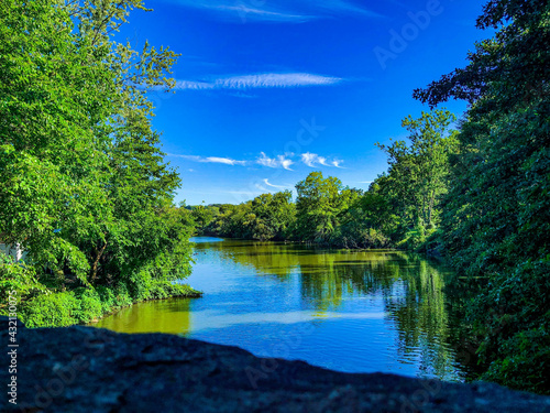 Wallpaper Mural Beautiful scenic view of the trees on the river bank against blue sky
