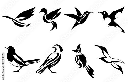 Photo Set of vector images of various birds such as heron hummingbird magpie falcon se