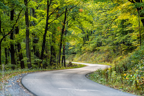 Canvas Print Autumn fall season green tree forest in West Virginia with winding steep paved r