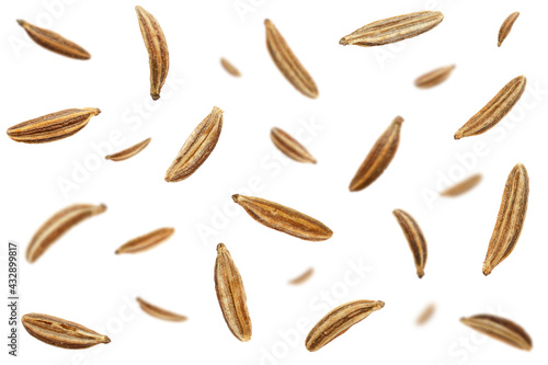 Obraz na płótnie Falling caraway seeds isolated on a white background, top view
