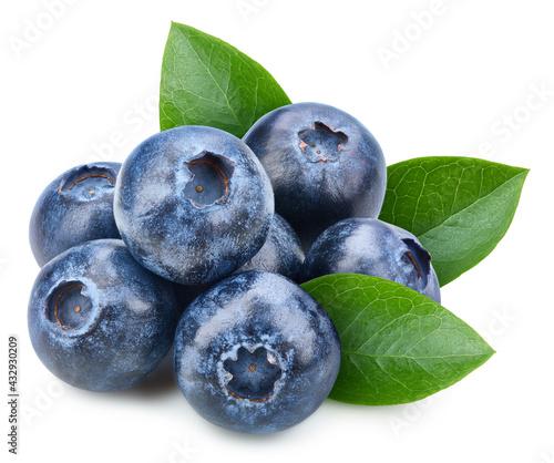 Slika na platnu Blueberry berry with blueberry leaf isolated on white background