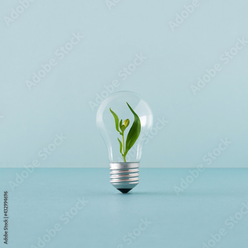 Photographie Creative layout with a plant growing inside the light bulb