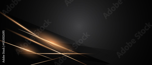 Abstract black background poster beauty with dynamic. technology network Vector illustration.