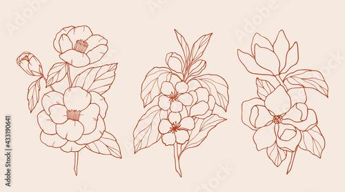 Billede på lærred Set of hand drawn camellia, apple blossom, magnolia