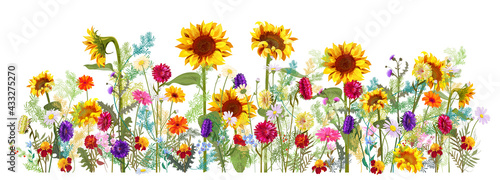Leinwand Poster Horizontal autumn's border: sunflowers, aster, thistles, gerbera, marigold, daisy flowers, small green twigs on white background