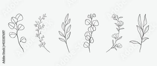 Fotografie, Tablou Minimal botanical hand drawing design for logo and wedding invitation