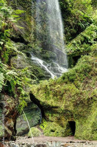 Fotografie, Obraz Los Tilos, La Palma Island, Spain