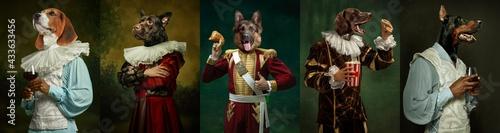 Fotografie, Obraz Models like medieval royalty persons in vintage clothing headed by dog's heads on dark vintage background