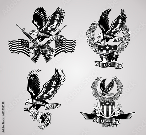 Obraz na plátne American eagle military marine and crossing rifles and Military combat aircraft