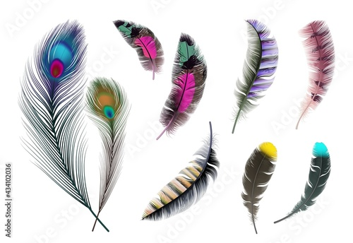 Bright feathers. Neon color decorative feather, peacock accessory. Realistic flying elements isolated vector set