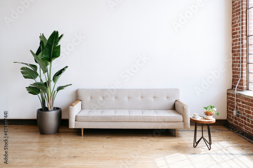 Fototapeta Modern beige fabric couch and plant in living room