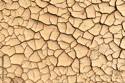 Fotografering Cracked land texture close up