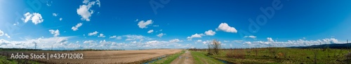 Fotografie, Obraz Panorama of plowed field in spring, blue sky, green grass, field road