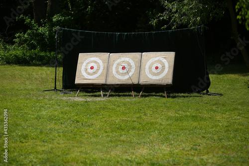 Slika na platnu Targets for recurve bow, archery