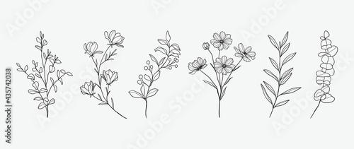 Fotografija Minimal botanical hand drawing design for logo and wedding invitation