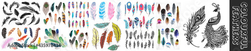 Fotografiet Vector color feathers collection, set of different falling fluffy twirled feathers, isolated on white, transparent background