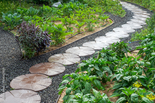 Canvastavla Stone path winding in vegetable garden