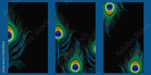 Wallpaper Mural set of templates for stories with peacock feathers